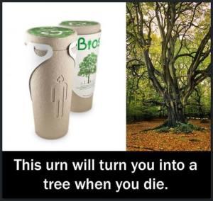 BIOS TREE URN